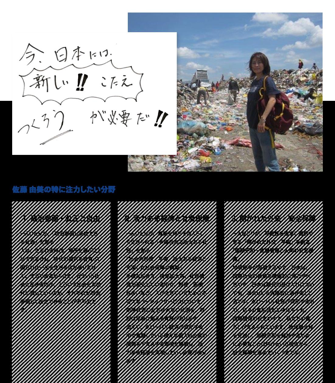 ●今日本には「つくろう、新しい答え」が必要だ! ●佐藤由美が特に注力したい分野:政治参画・公正と自由「一人ひとりが、「政治参画し決定できる社会」を創る。人は、生まれる時代、場所を選ぶことはできません。時代の選択を背負って限られた一生を生きるほかありません。そうであるからこそ、どういう社会に生きるのか、どういう社会を次世代に残していくのか、それぞれが政治参画して決定できることが不可欠です。」、活力ある経済と社会保障「一人ひとりが、尊厳を持ちその人らしく生きられる「多様性ある活力ある社会」を創る。「社会的包摂・平等、活力ある経済と充実した社会保障の構築」多様な生き方、格差拡大等社会構造が変化している中で、教育・医療・住まいなど、人が生きていくために不可欠なベーシックサービスについて、所得状況に左右されない状況を、政府は早急に整える責務があります。加えて、グローバル経済が深化する中で奮闘している様々な個人や企業の展開を下支えする環境を構築し、活力ある経済を実現していく必要があります。」開かれた外交・安全保障「一人ひとりが、可能性を追求し選択できる「開かれた外交・平和」を創る。「国際平和・危機管理と人間の安全保障」グローバル社会が深化する中で、日々の食生活もエネルギーも、国際関係の安定の中で、私たちの暮らしが支えられています。地球儀全体を見渡し、国際平和を維持するために必要なことは何かという視点から、安全保障を進めていくべきです。」